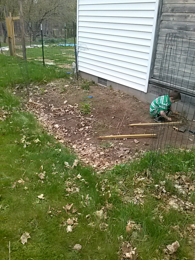 Here's what the back garden bed looked like before we started on it tonight.