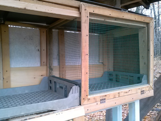 We have three compartments so each of our rabbits has their own space.  They are divided by hardware cloth.