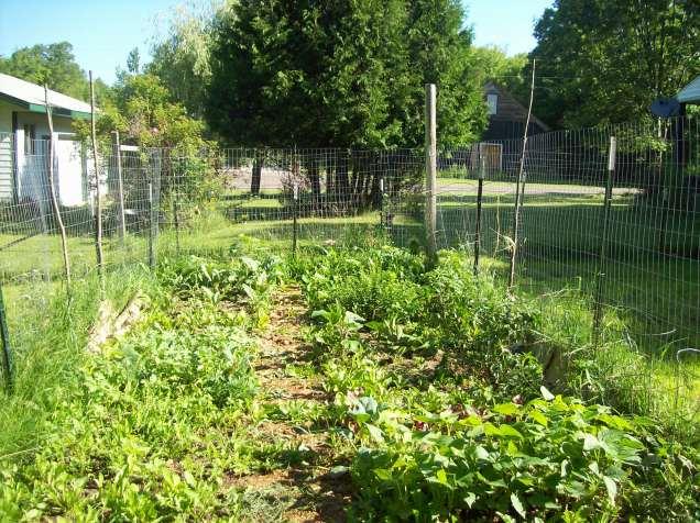 garden 7.16