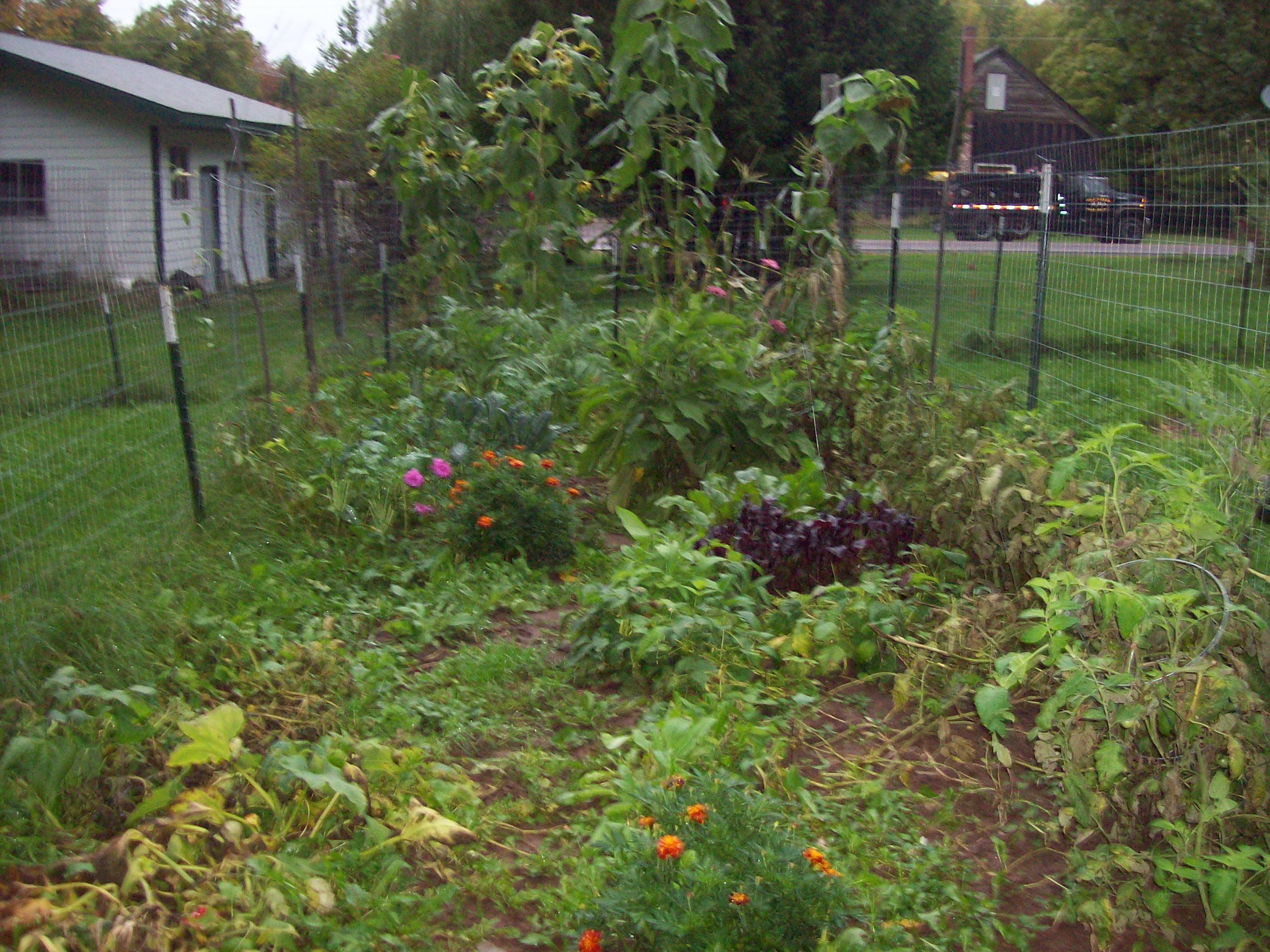 garden-9-28