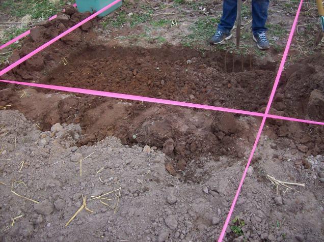 double dug