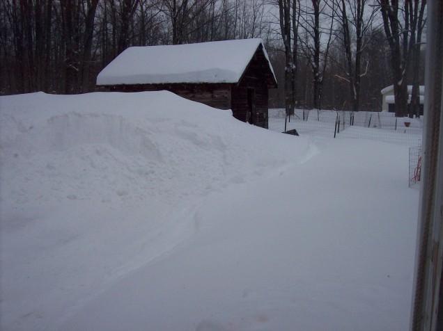 snow now