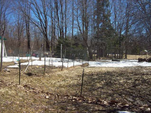 snow yard 1
