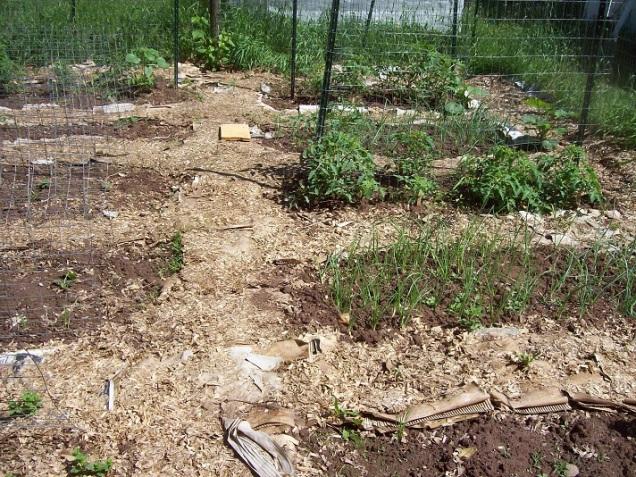 main-garden-1